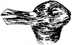 duck:rabbit